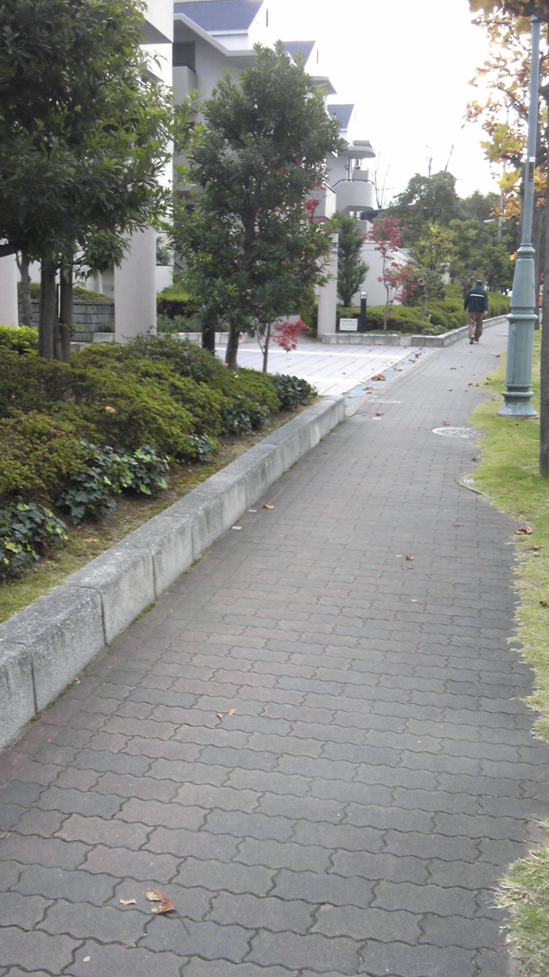 バス停からの道1