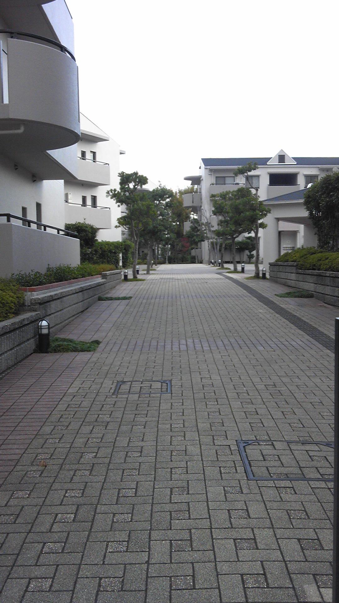バス停からの道2
