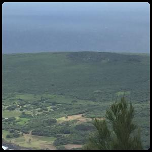 カラウパパ半島